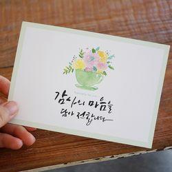 캘리그라피 엽서] 감사의 마음을 담아 드립니다