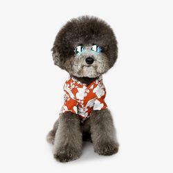 강아지 하와이안셔츠 - 오렌지