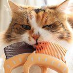 고양이 강아지 사랑조개빗 3종 그루밍 털제거 브러쉬 단모 장모