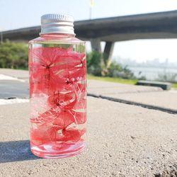 원통형 분홍 수국 하바리움 만들기 패키지 DIY