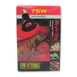 파충류 적외선 램프 75W