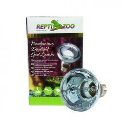렙티주 데이라이트 램프 50W(B63050)
