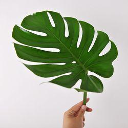 몬스테라 Leaf + 화병 set (생화)