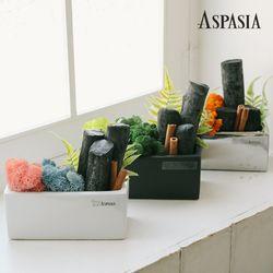 에마스 투톤 스칸디아모스 숯 화분 DIY세트-공기정화
