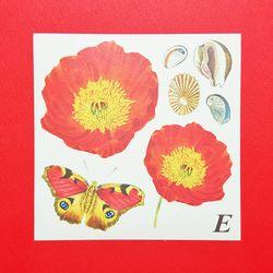 Paper Sticker - Jardin Red