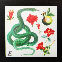 Paper Sticker - Silk Snake