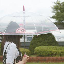 카카오프렌즈 스윗어피치 투명우산