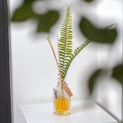 플랜테리어 디퓨저 고사리잎 150ml 실내방향제 천연발효주정