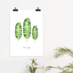 banana 식물 액자 포스터(A3)