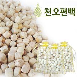 피톤치드 편백나무 편백 큐브 향기주머니