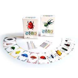 어린이 카드 보드게임 곤충채집