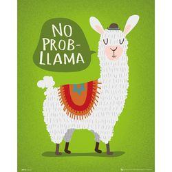 MP2145 라마 No Probllama (40x50)(포스터만)