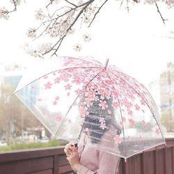 비올때도 예쁘게 장우산모음