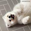 프렌즈 애견매트 강아지매트 (중)