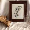 유칼립투스 나무액자 (원목액자포스터포함)