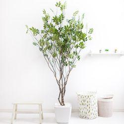 라인-느티나무 210cm 아크릴 5-5 [조화]