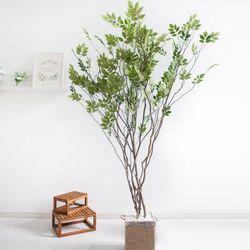 라인-느티나무 210cm 로프 5-5 [조화]