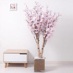 쌍대벚꽃나무 170cm 로프 5-5 [조화]