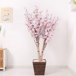 쌍대벚꽃나무 170cm 우드 5-5 [조화]