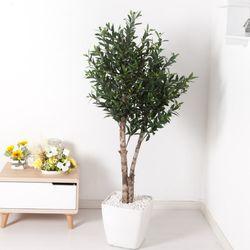 올리브나무 170cm 아크릴 5-5 [조화]
