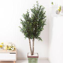 올리브나무 200cm 빈티지 5-5 [조화]