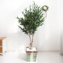 올리브나무 170cm 빈티지 5-5 [조화]