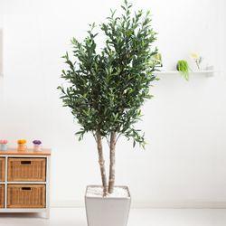 올리브나무 200cm 메탈 5-7 [조화]