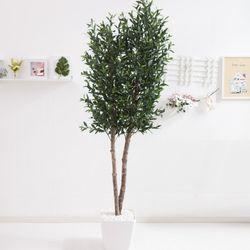 올리브나무 230cm 아크릴 5-5 [조화]