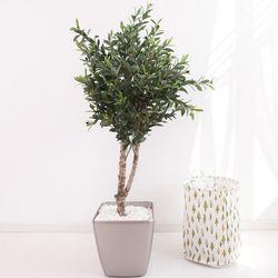올리브나무 170cm 메탈 5-7 [조화]