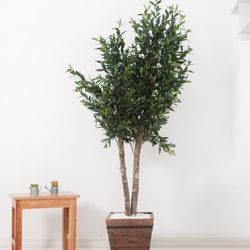 올리브나무 200cm 우드 5-5 [조화]