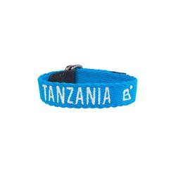 비커넥트 탄자니아