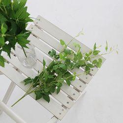 초록초록 그린잎부쉬