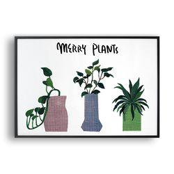 Merry Plants