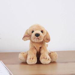 Yellow Labrador - 옐로우 래브라도
