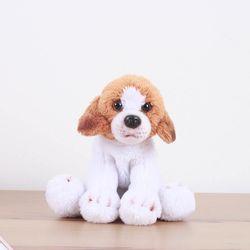 Beagle - 비글