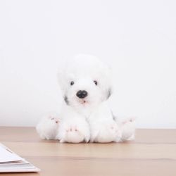 Sheepdog - 쉽독