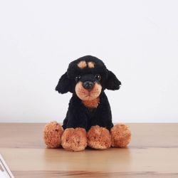 Rottweiler - 롯트웨일러