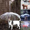 강아지 우산