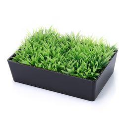 잔디 비누 홀더 1002703