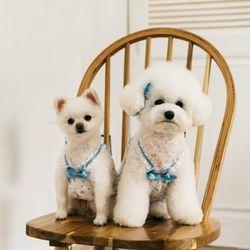 강아지옷 로즈코코로 블루 슬리브리스(브로치1개포함)