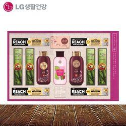 LG생활건강 16호 추석선물세트 박스단위 5개입