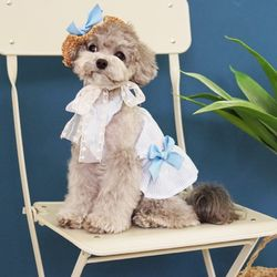 강아지옷 하와이 홀터넥 원피스