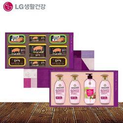 LG생활건강 컬렉션 65호 추석선물세트 박스단위 1개입