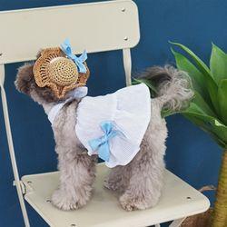 강아지옷 하와이 홀터넥 세트