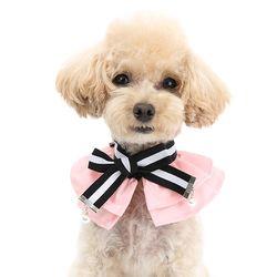 실비 케이프-핑크
