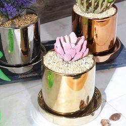 원형 골드 도자기 화분 (받침세트)