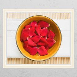 ca634-장미꽃차창문그림액자