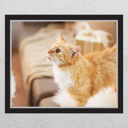 cg680-귀여운고양이창문그림액자