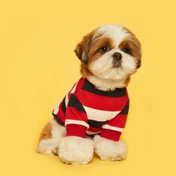 강아지옷 스트라이프 맨투맨  - 레드 네이비
