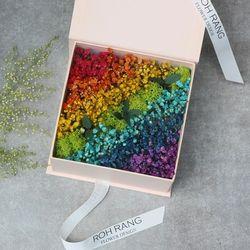 로랑 프리저브드 무지개안개꽃 박스